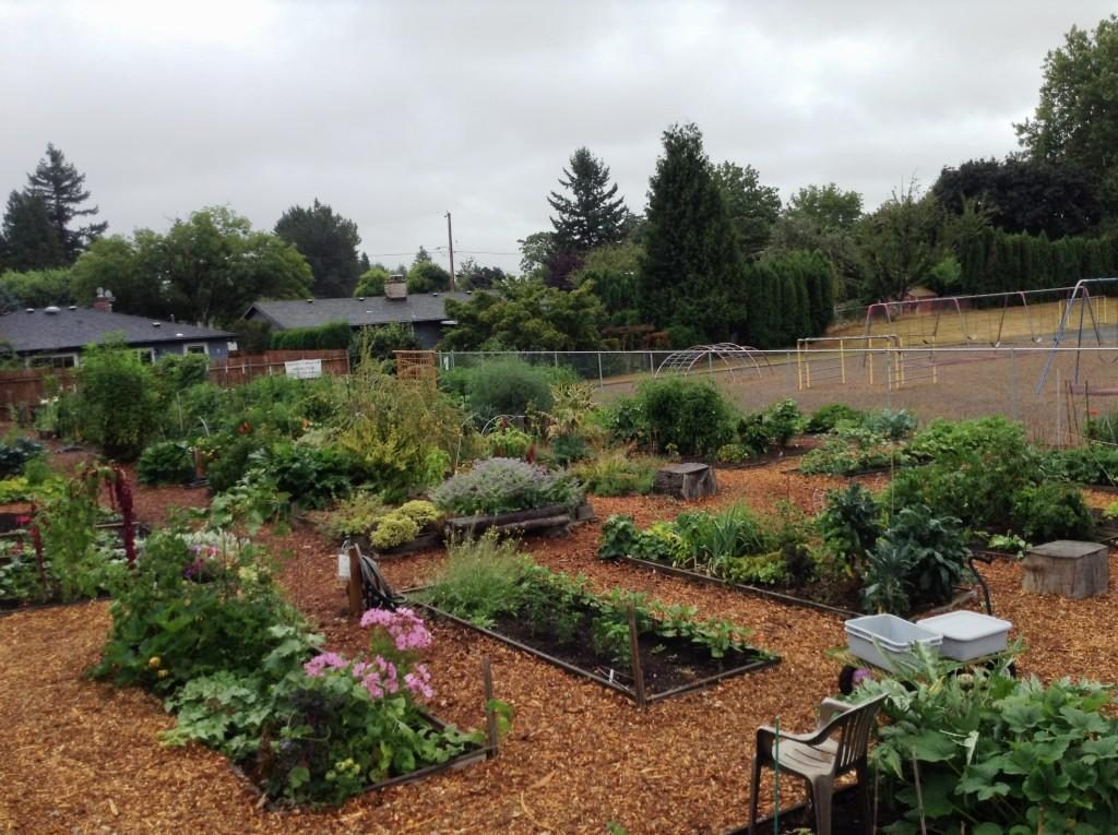 Photo of the Campbell Community Garden